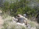 2008-04-05 114235 _DSC5066