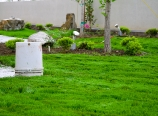 2011-04-24-113008-dsc0038