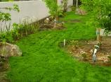 2011-04-24-113135-dsc0042