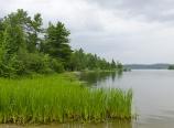 Shagawa Lake