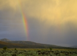 Rainbow from Apple Canyon Road
