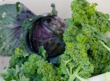 Cabbage and broccoli