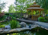 The Nyiradys\'s pond