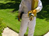 Chris in the bee suit