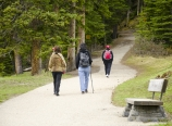 Hiking up Lake Agnes Trail