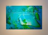 Ocean Soul exhibit by Brian Skerry