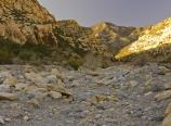 Along Lost Creek trail