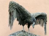 Condor sculpture