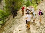 Examining the San Andreas Fault