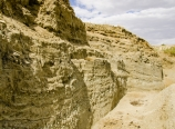 Pallett Creek paleoseismology site