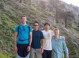 The orthopaedics group