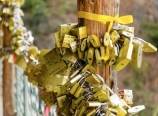 Wish locks on Cang Mountain