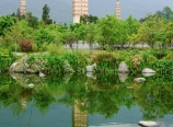 Three Pagodas complex