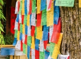 Tibetan restaurant in Shuhe village