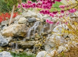 Peach blossoms and waterfall