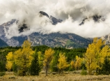 Shifting clouds and fall color