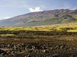 View of Mauna Kea from Saddle Road junction
