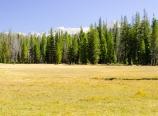 Sky Parlor Meadow