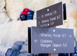 Mt. Whitney trail junction