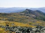 Crawford Path, Hut, and Mt. Monroe