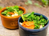 Kale salad with apples and carrots