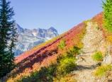 Up to Hannegan Peak