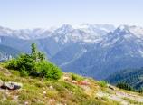 View from Hannegan Peak