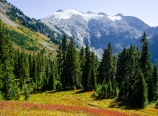 Above Hannegan Pass
