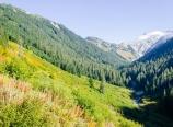 Below Hannegan Pass