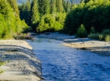 Nooksack River and Mt. Shuksan