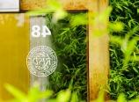Rhode Island School of Design door and bamboo