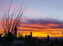 Signal Hill sunset