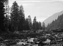 Vivian Creek Trailhead