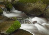 Baskin Creek