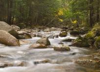 Saco River Flow
