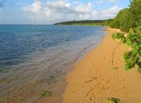 Playa Seven Seas