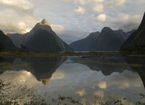 Milford Sound Morning