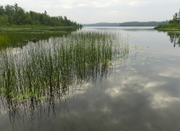 Armstrong Lake in the Boundary Waters