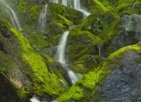 Dick Creek Cascades