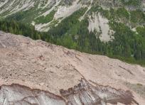 Carbon Glacier Feeding Winthrop Creek