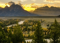 Golden rays at Snake River Overlook