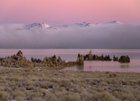 Mono Lake Predawn