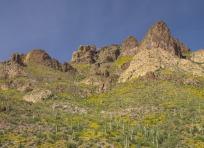 Coronado Mesa